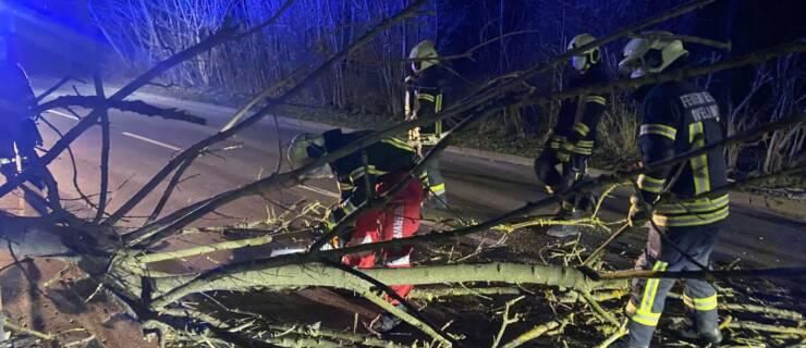 Sturmschaden – Baum auf Straße
